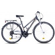 Bicicleta Capriolo Trekking Roadster Lady grey-blue 19
